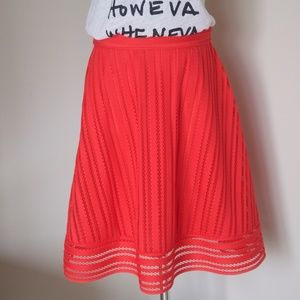 NWT J Crew Striped Eyelet Skirt A-line Full